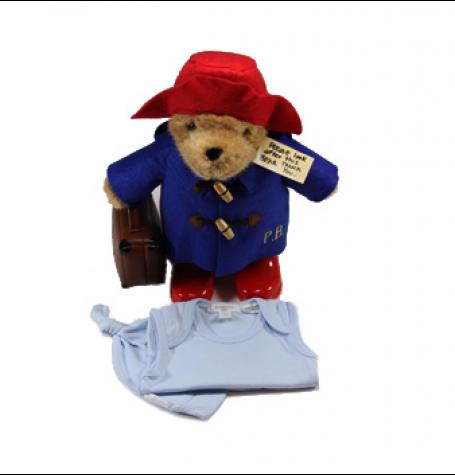 Meet Paddington Bear